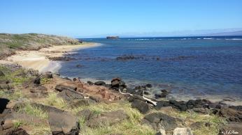 En longeant la plage pour se rendre à l'épave